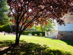 Residencia-estudiantes-VillaPepa-UEM-URJC-chalet04
